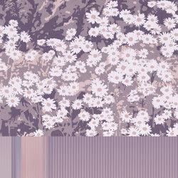 Complicity | Revestimientos de paredes / papeles pintados | GLAMORA