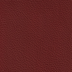 BARON 38504 Piemont | Natural leather | BOXMARK Leather GmbH & Co KG