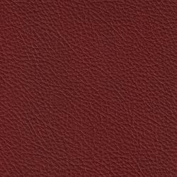BARON 38504 Piemont | Naturleder | BOXMARK Leather GmbH & Co KG
