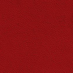 BARON 39025 Maranello | Naturleder | BOXMARK Leather GmbH & Co KG