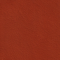 BARON 39200 Ayers Rock | Naturleder | BOXMARK Leather GmbH & Co KG