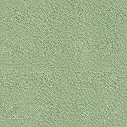 BARON 69201 Amazon | Naturleder | BOXMARK Leather GmbH & Co KG