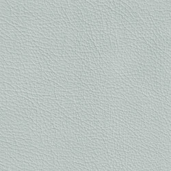 BARON 79200 Siberia | Naturleder | BOXMARK Leather GmbH & Co KG
