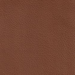BARON 89201 Death Valley | Naturleder | BOXMARK Leather GmbH & Co KG