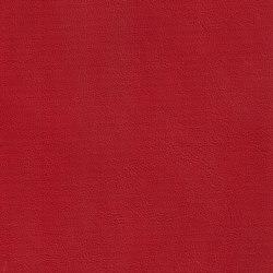 DUKE 35511 Cardinal | Naturleder | BOXMARK Leather GmbH & Co KG