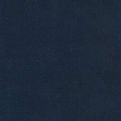 DUKE 55521 Tomtit | Naturleder | BOXMARK Leather GmbH & Co KG