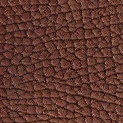 EMOTIONS Bisonte | Naturleder | BOXMARK Leather GmbH & Co KG
