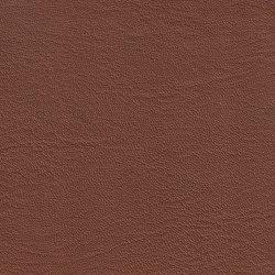 EMOTIONS Carbone | Naturleder | BOXMARK Leather GmbH & Co KG
