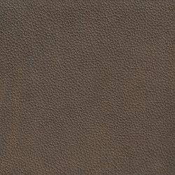 EMOTIONS Dollarino | Cuero natural | BOXMARK Leather GmbH & Co KG