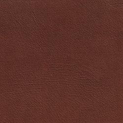EMOTIONS Madras Piccolo | Naturleder | BOXMARK Leather GmbH & Co KG
