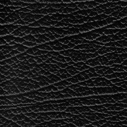 EMOTIONS Nuovo Elefante | Vero cuoio | BOXMARK Leather GmbH & Co KG