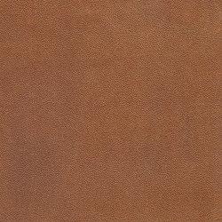 EMOTIONS Punto | Naturleder | BOXMARK Leather GmbH & Co KG