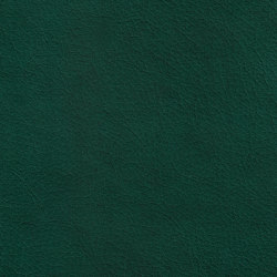 X Green 67540 Clover | Natural leather | BOXMARK Leather GmbH & Co KG