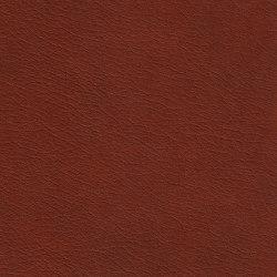X Green 87520 Wheat | Naturleder | BOXMARK Leather GmbH & Co KG