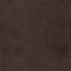 X Green 97555 Yarrow | Naturleder | BOXMARK Leather GmbH & Co KG