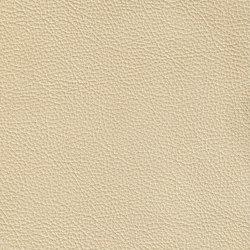 XTREME GEPRÄGT 19160 Sylt | Naturleder | BOXMARK Leather GmbH & Co KG