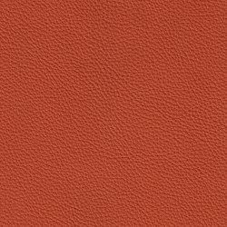 XTREME GEPRÄGT 39168 Rhodes | Naturleder | BOXMARK Leather GmbH & Co KG
