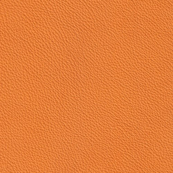 XTREME EMBOSSED 39177 Mykonos | Cuero natural | BOXMARK Leather GmbH & Co KG