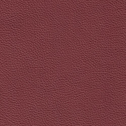 XTREME GEPRÄGT 49116 Tabui | Naturleder | BOXMARK Leather GmbH & Co KG