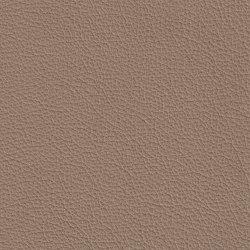 XTREME GEPRÄGT 79173 Sumatra | Naturleder | BOXMARK Leather GmbH & Co KG