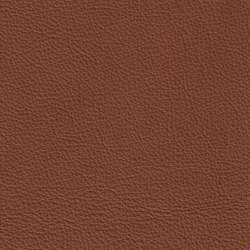XTREME GEPRÄGT 89133 Horacio | Naturleder | BOXMARK Leather GmbH & Co KG