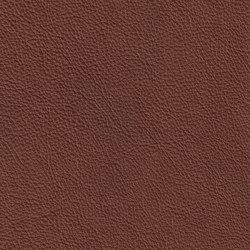 XTREME GEPRÄGT 89170 Samoa | Naturleder | BOXMARK Leather GmbH & Co KG