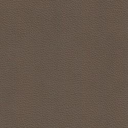 XTREME GEPRÄGT 89174 Trinidad | Naturleder | BOXMARK Leather GmbH & Co KG
