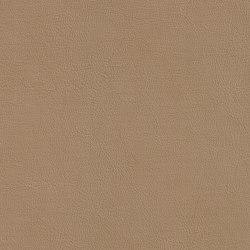 XTREME GLATT 15511 Berkner | Naturleder | BOXMARK Leather GmbH & Co KG