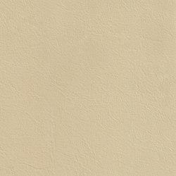 XTREME GLATT 15705 Bouvet   Naturleder   BOXMARK Leather GmbH & Co KG
