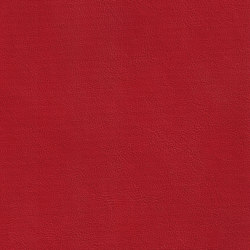 XTREME GLATT 35511 Balleny | Naturleder | BOXMARK Leather GmbH & Co KG