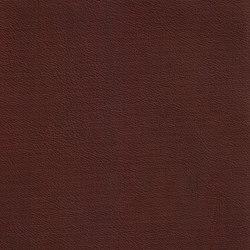 XTREME GLATT 35514 Sturge | Naturleder | BOXMARK Leather GmbH & Co KG