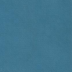 XTREME GLATT 55512 Latady | Naturleder | BOXMARK Leather GmbH & Co KG
