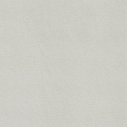 XTREME GLATT 75511 Brabant   Naturleder   BOXMARK Leather GmbH & Co KG
