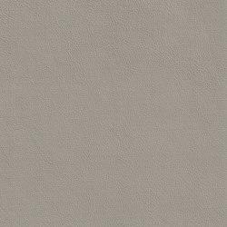 XTREME GLATT 75515 Robben | Naturleder | BOXMARK Leather GmbH & Co KG