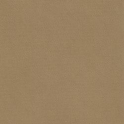 XTREME GLATT 75521 Morrell   Naturleder   BOXMARK Leather GmbH & Co KG