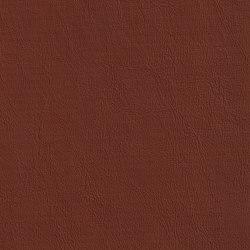 XTREME GLATT 85512 Nelson   Naturleder   BOXMARK Leather GmbH & Co KG