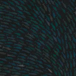 Rainbow Fish | Wandbeläge / Tapeten | LONDONART