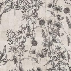 Wild Flowers   Revestimientos de paredes / papeles pintados   LONDONART