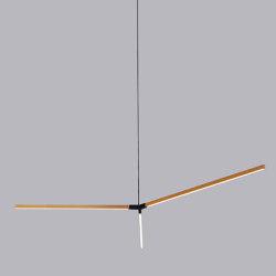 Big Single Bough | Suspended lights | STICKBULB