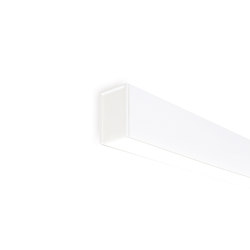 Fifty Ho Wall | wt | Wall lights | ARKOSLIGHT