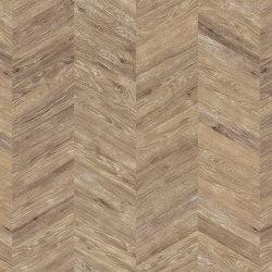 Chevron | PW 3101 | Planchas de plástico | Project Floors