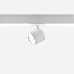 Newton Flat Rail | Ceiling lights | EGOLUCE