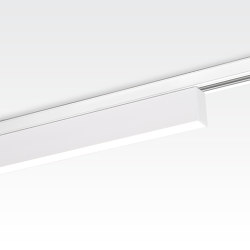 TRAXX 1X  LEDLINE | Ceiling lights | Orbit