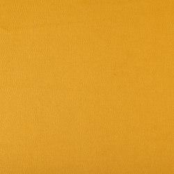 Emotion 204 | Upholstery fabrics | Flukso