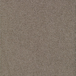 Elara 8G81 | Wall-to-wall carpets | Vorwerk