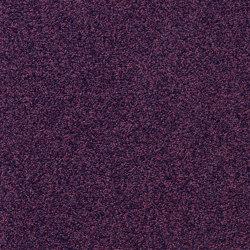 Superior 1012 | Wall-to-wall carpets | Vorwerk