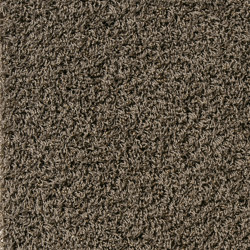 Superior 1041 | Wall-to-wall carpets | Vorwerk