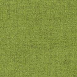 CAVALLO PIU - 248 | Upholstery fabrics | Création Baumann
