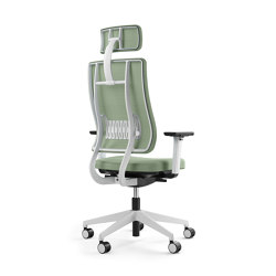 Newback Executive chair | Sillas de oficina | Viasit