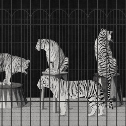 Tigers | Recycled synthetics | LONDONART